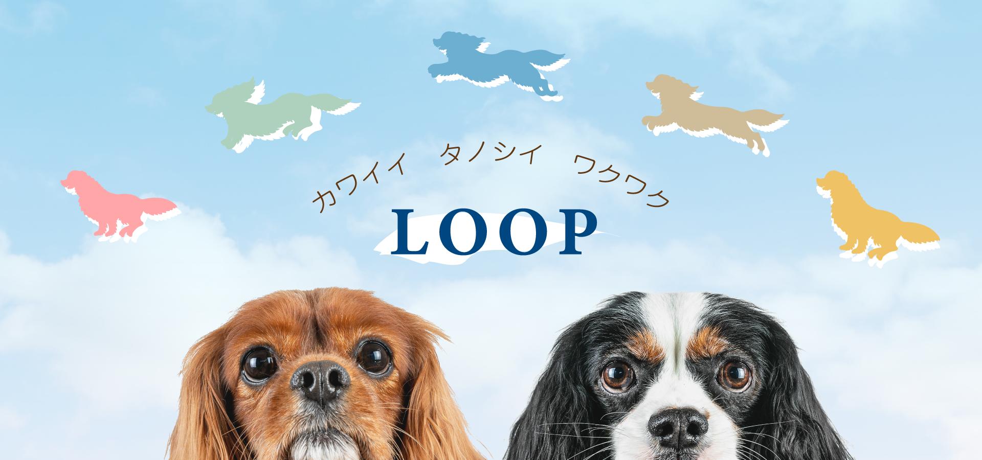 埼玉県鳩山町の雑貨店LOOPのイメージ画像