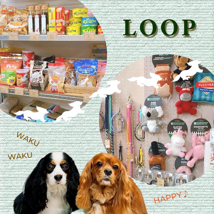 埼玉県鳩山町の雑貨店LOOPイメージ画像